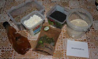 Шаг 1: Подготовьте ингредиенты: творог, семена тыквы, черный и белый кунжут, мёд.