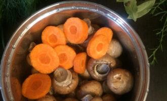 Шаг 2: Хорошенько промойте грибы, очистите и нарежьте кружочками морковь. Уложите в небольшую кастрюлю (примерно на 2 литра).