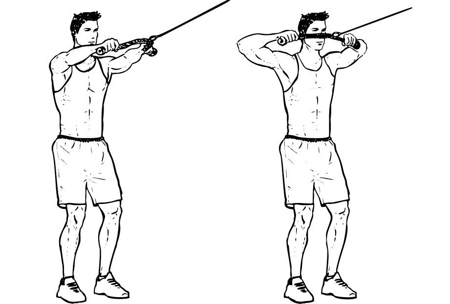 Тяга атлетических саней к себе спиной в тренировках для набора массы